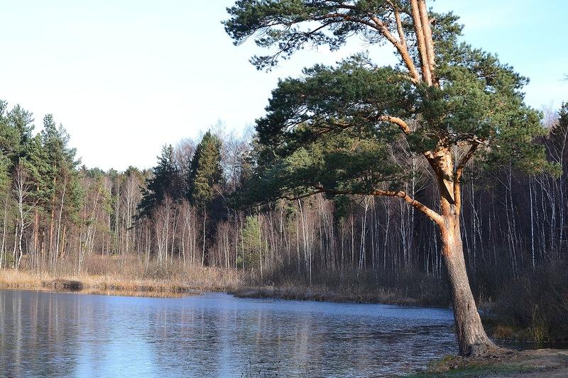Черное_озеро2.jpg